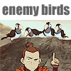 enemy birds